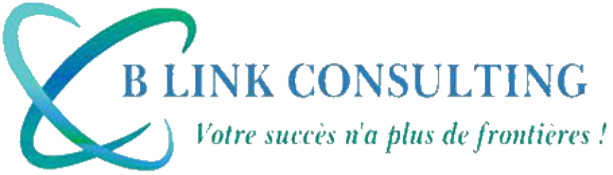BLINK CONSULTING